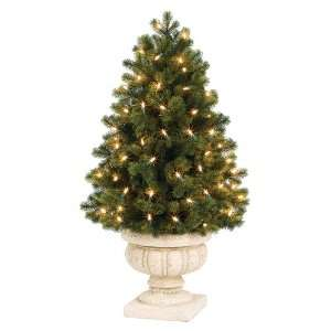 GKI Bethlehem Lighting Potted 3 Foot Savannah Spruce