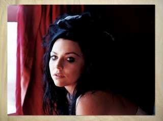AN1148 rock band Evanescence Amy Lee POSTER