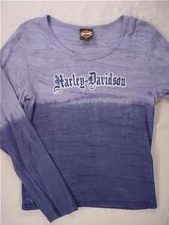 HARLEY DAVIDSON Flaming Gorge Long Sleeve T Shirt (Womens Large