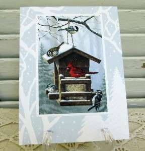 10 Boxed Set Christmas Cards Festive Feast Bird Feeder 676944910356