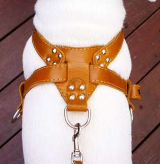 Boxer Leather Dog Pulling Harness Excercise Walk 23  29 Pitt Bull