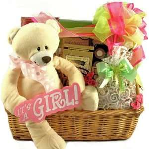 Princess   New Baby Girl Gift Basket   Great Shower Gift Idea Baby