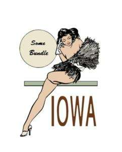 Travel Humor Hot Rat Rod Vinyl Decals Iowa Pinup #35