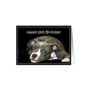 Happy 25th Birthday Pitbull puppy Card: Toys & Games