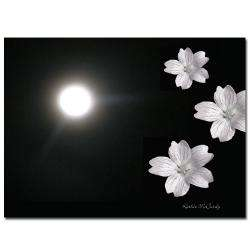 Kathie McCurdy Summer Moon Canvas Art