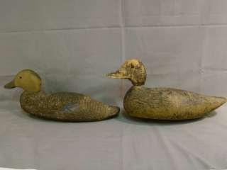 Antique PRIMITIVE Working BIRD Old FOLK ART Hunting DUCK DECOY
