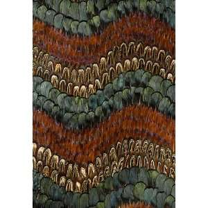 Biscayne Peacock / Pheasant by F Schumacher Wallpaper