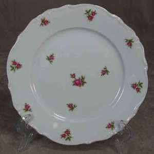 Winterling Bavaria China Rosette Salad Plate Pink Roses