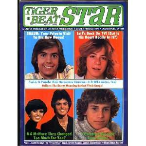 , Leif Garrett, Parker Stevenson, Willie Ames, Donny and Marie Books