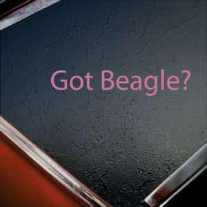 Got Beagle? Pink Decal Dog Rabbit Truck Window Pink