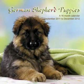 German Shepherd Puppies 2012 Calendar   NEW M